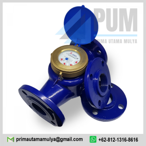 water-meter-amico-2-inch-dn50-type-lxsg-50e-2-50mm