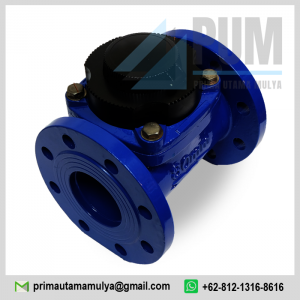 water-meter-amico-3-inch-dn80-type-lxlg-80e-3-80mm