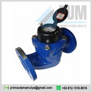 Water meter Calibrate Vertical Horizontal 2 inch (DN50) Type WS 50 merupakan meteran air yang sudah banyak digunakan oleh masyarakat Indonesia,